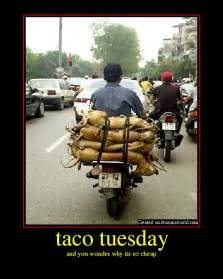 Taco Tuesday Funny Quotes