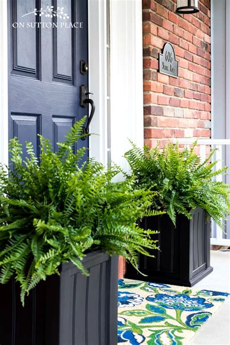 easy  beautiful container garden ideas   porch