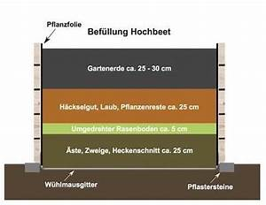 Hochbeet Aufbau Schichten : hochbeet aus europaletten hochbeet bef llen hochbeet ~ Articles-book.com Haus und Dekorationen