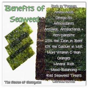The gallery for --> Kombu Seaweed Benefits