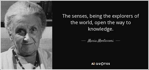 maria montessori quote  senses   explorers