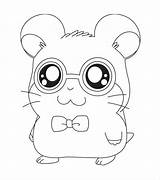 Cool Coloring Pages Animal Templates Template Colouring sketch template