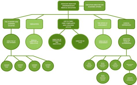 sdc leadership  organizational chart