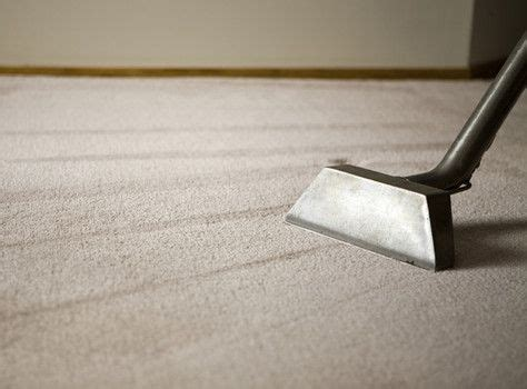 100 carpet cleaning recipes on carpet