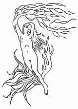Kelp Drawing Getdrawings sketch template