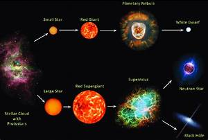 1   Stellar Evolution  Not To Scale   Figure Taken From