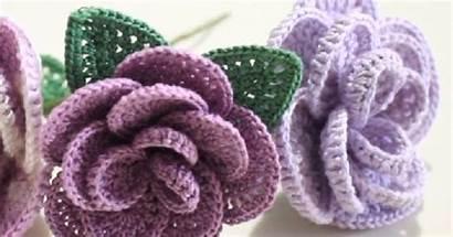 Crochet Step Rose
