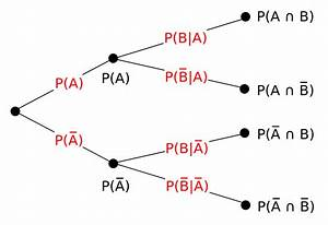 File Probability Tree Diagram Svg