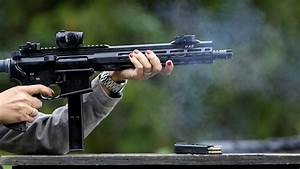 Czech Parliament approves open-carry gun law to fight ...