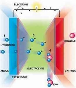 Fonctionnement Pile à Combustible : tpe energies alternatives au p trole 1 re s4 ~ Medecine-chirurgie-esthetiques.com Avis de Voitures