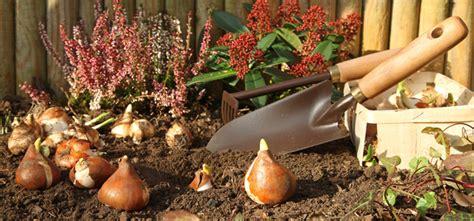 Garten Im Herbst Umgraben Oder Fräsen by Ihr Garten Im Herbst Jetzt Ist Pflanzzeit