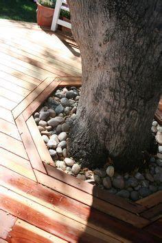 framing fill drained rocks  gravels  tree base