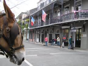 New Orleans Wikipedia