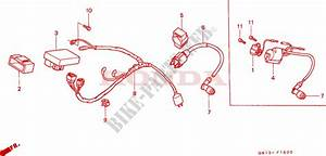 Wire Harness   Ignition Coil For Honda Xr 80 1987   Honda
