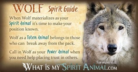 wolf symbolism meaning spirit animal totem power