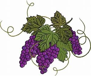 Free Grapes Clipart Image 0515-0905-2701-0701 Food Clipart