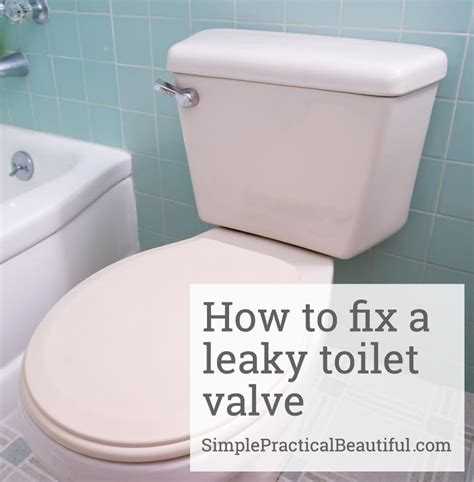 fix toilet 28 images how to fix a toilet that is