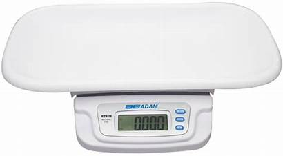 Scale Weighing Toddler Mtb Scales Scaletec Animal