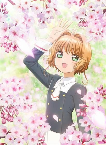 Sakura Anime Card Ova Captor Cardcaptor Clear