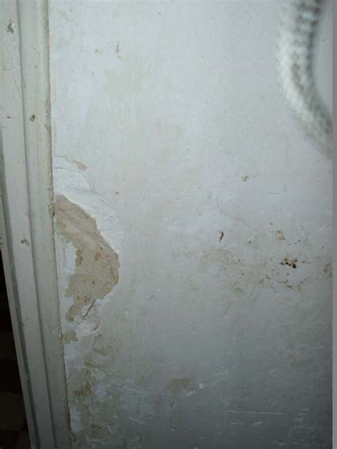 renover un mur en platre tres abimé conseils pour la r 233 paration d un mur abim 233 r 233 parer un mur