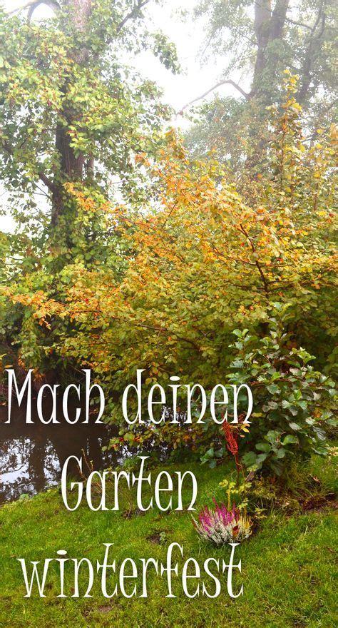 Pflanzen Im Oktober by Der Garten Im Oktober Was Gibt Es Zu Tun Terrasse