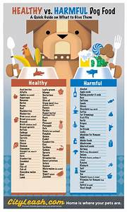 Healthy Dog Chart Healthy Vs Harmful Dog Food Pictures Photos And Images