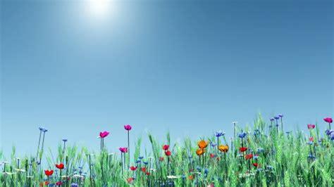fonds d 233 cran la s 233 lection printemps 2013 du mod 233 rateur