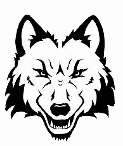 Wolf Face Head Drawing Line Clipart Outline