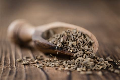 valerian root  natural sleep aid