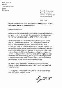 Exemple Lettre De Motivation Bts : lettre de motivation bts assistant de gestion en alternance dedooddeband ~ Medecine-chirurgie-esthetiques.com Avis de Voitures