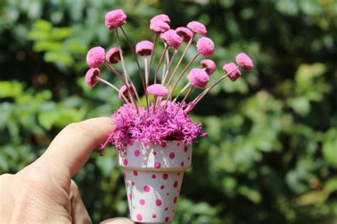 Polka Dot Pots-miniature Flower Pots-pink Star Flowers