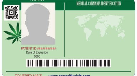 Check spelling or type a new query. How to Get a Medical Marijuana Card in Florida - Medical Marijuana Doctors Florida | Tetra ...