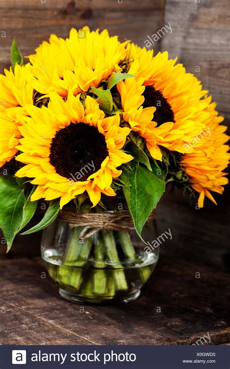 beautiful fresh sunflowers  vase  wooden background