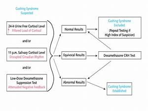Cushing 's syndrome (1)