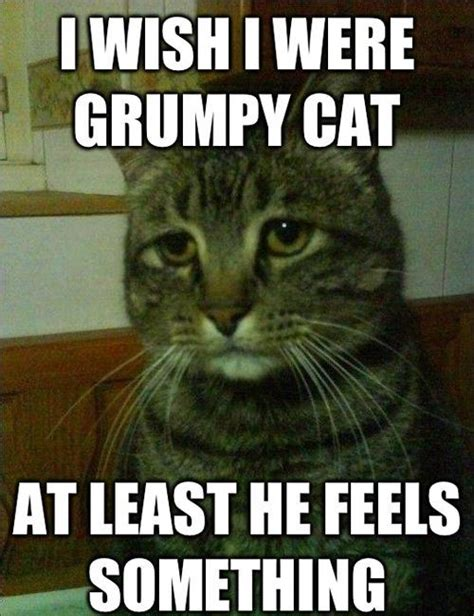 Funny Depression Memes - quot simon the depressed cat quot is my new favorite meme pophangover