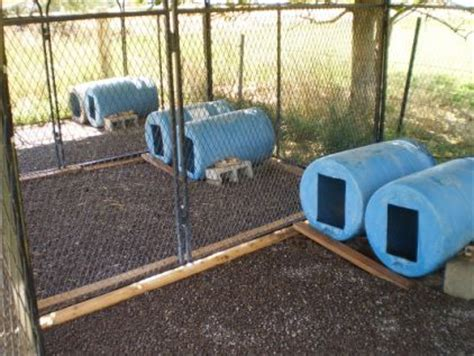 Kennel Flooring Ideas by Kennel Flooring Our Kennel J S Kennels