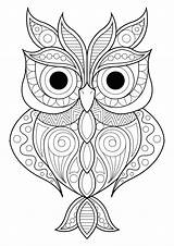 Owl Patterns Coloring Owls Simple Various Different Pages Adult Animals Nature sketch template