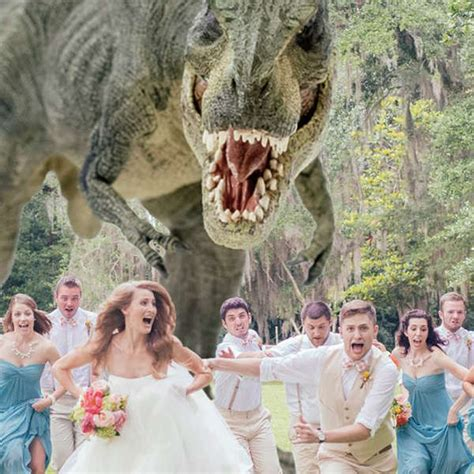 dinosaur massacre wedding photography quinn miller