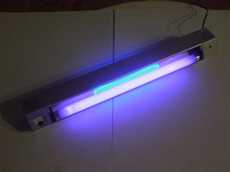 lights appealing black light led