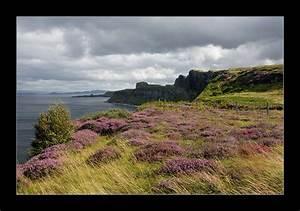 Land In Schottland Kaufen : isle of skye schottland foto bild landschaft natur ~ Lizthompson.info Haus und Dekorationen