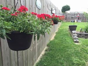 Hanging, Flower, Baskets, On, Fence