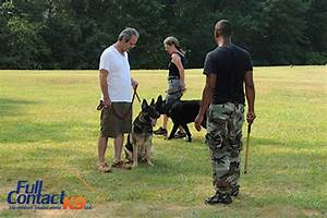 full contact k9 introduces three tiered dog obedience With dog training atlanta