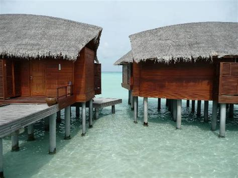 chambre sur pilotis maldives maison sur pilotis photo de anantara dhigu maldives
