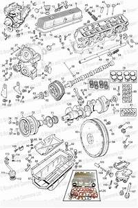1977 Mgb Wiring Harness  Wiring  Wiring Diagrams Instructions