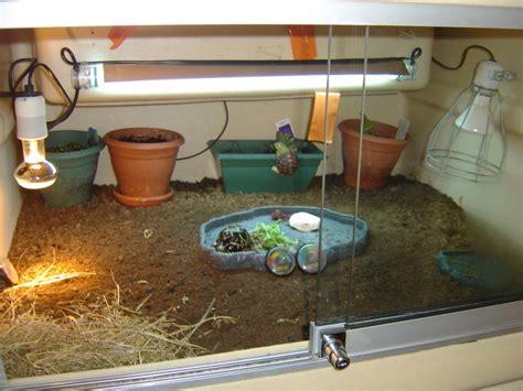 le uv terrarium tortue les terrariums quot herptek quot