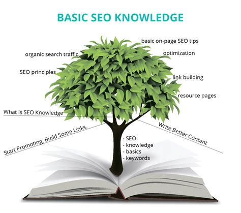 basic seo knowledge every and solopreneur should - Basic Seo Knowledge