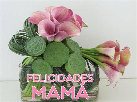 banco de im 193 genes arreglos florales y ramos de flores para mam 225 10 de mayo d 237 a de las madres