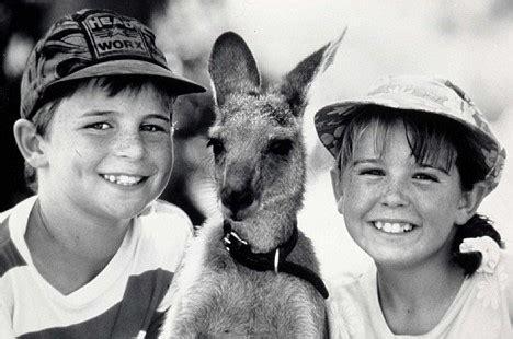 park  skippy  bush kangaroo filmed set  close