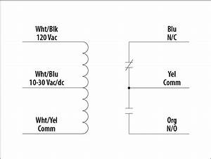 Rib Relay 24v Coil Wiring Diagram
