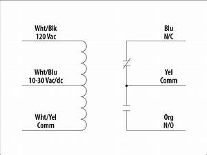 Wiring Diagram 120v Spno Relay 41110 Enotecaombrerosse It